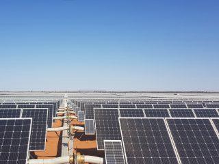 Renewables - Bungala solar